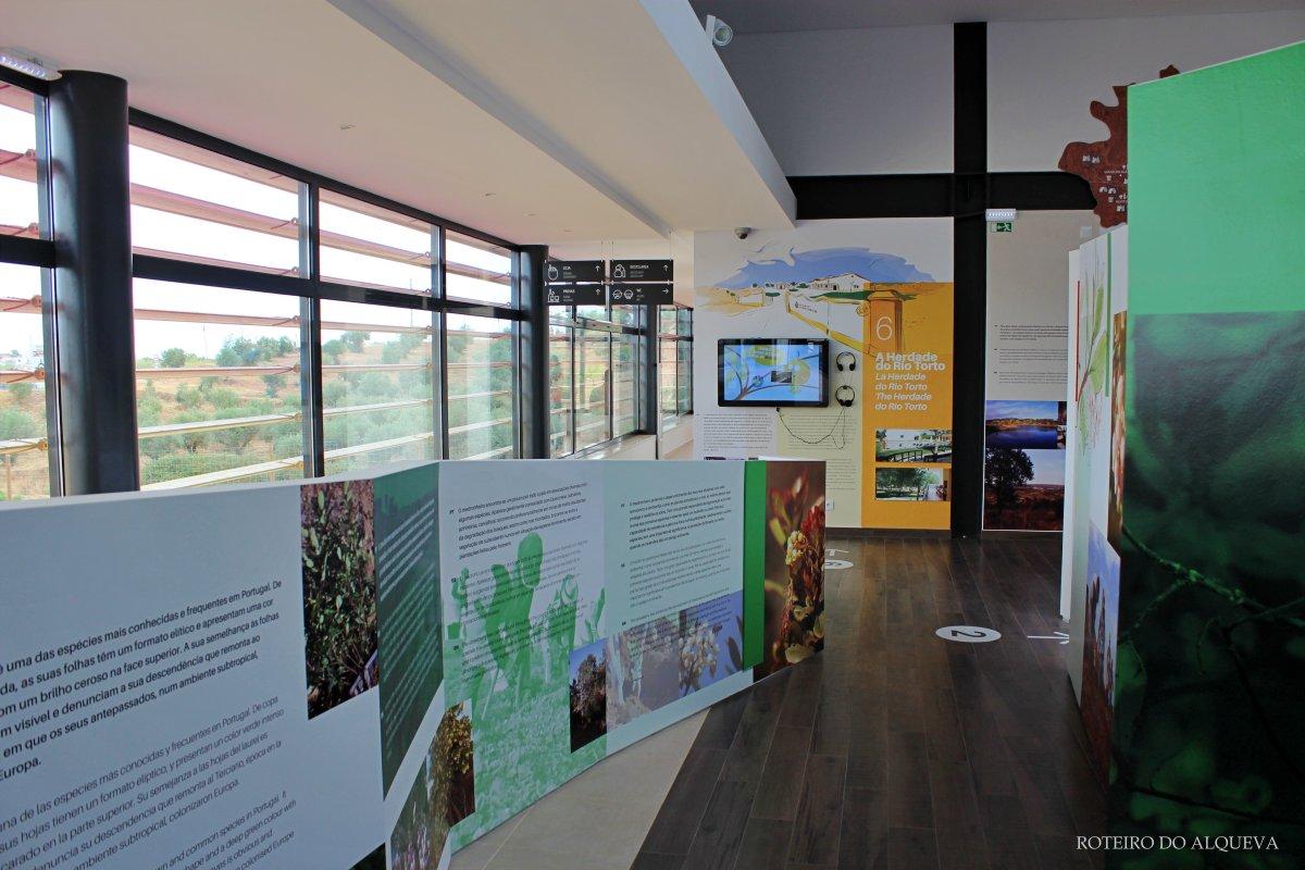 MuseuDoMedronho-3