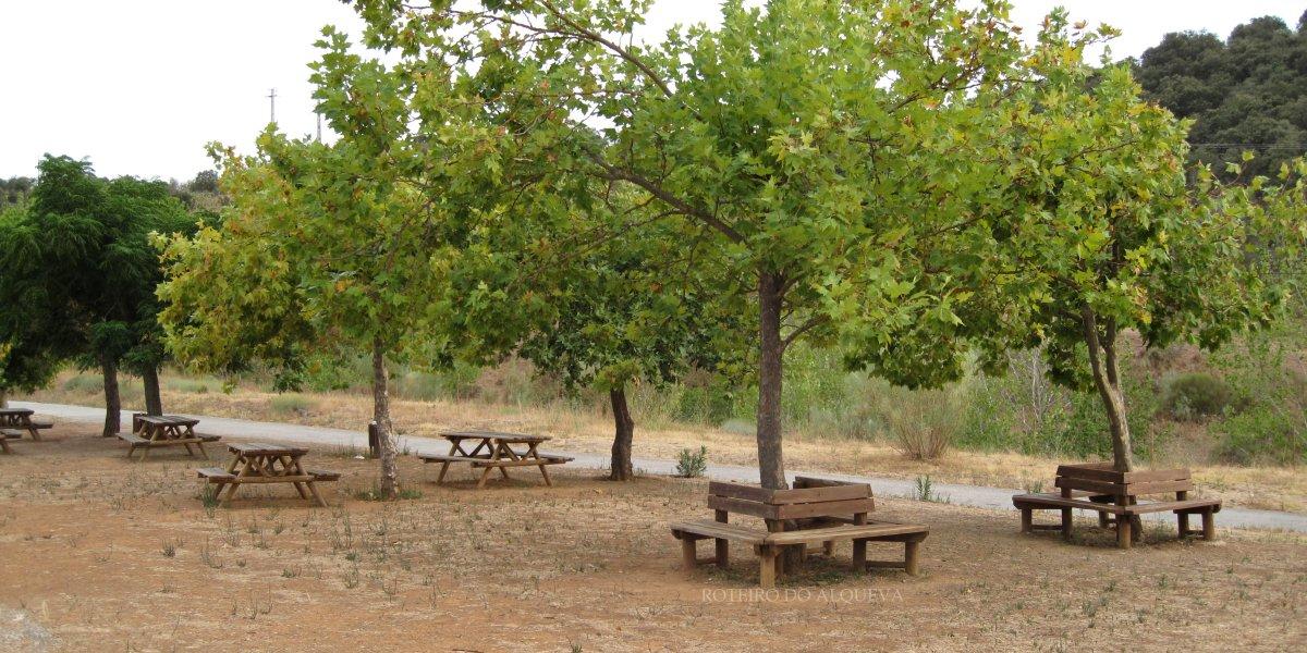 ParqueMerendasBarragem-2